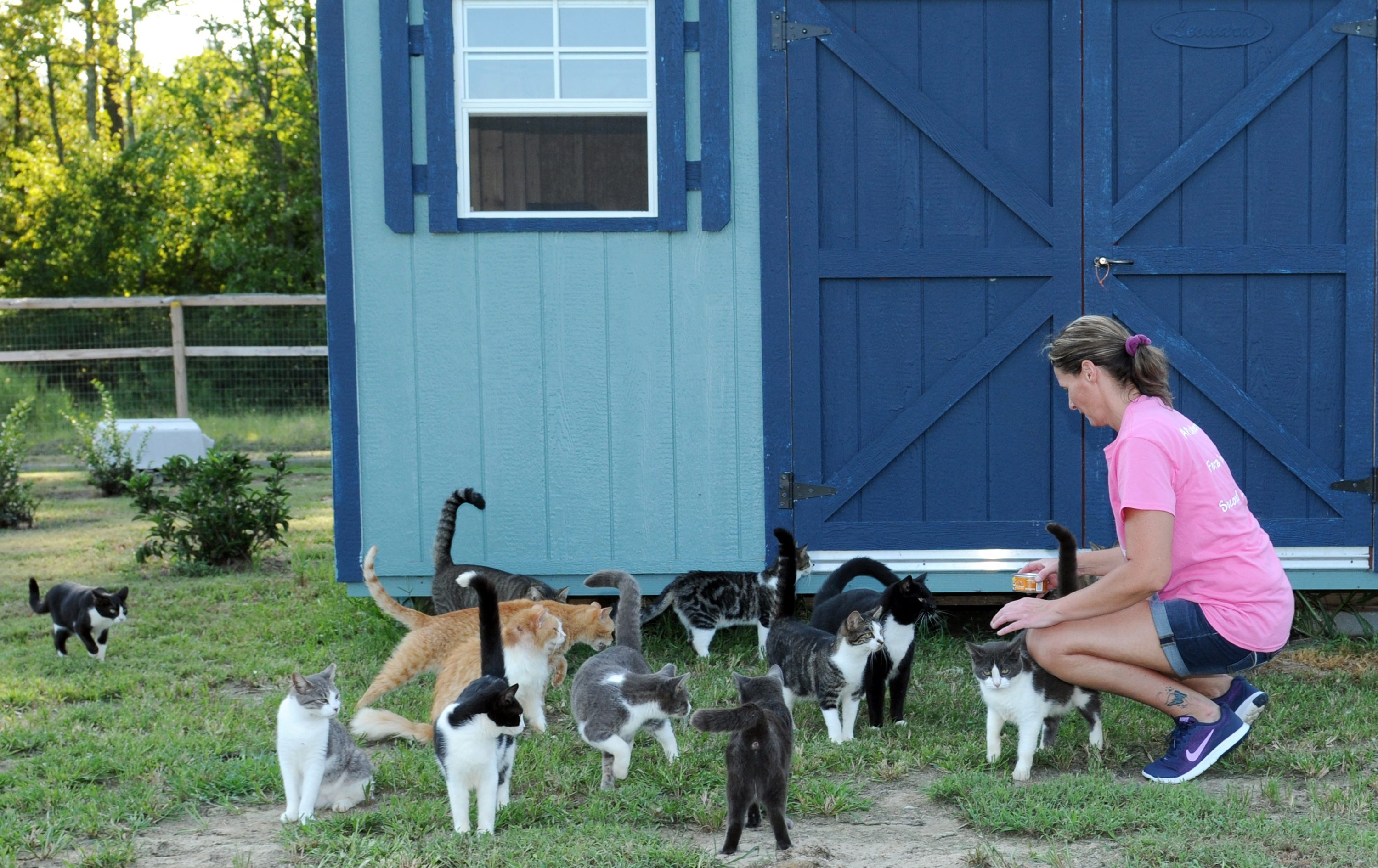 Kimberly with a Group of Cats